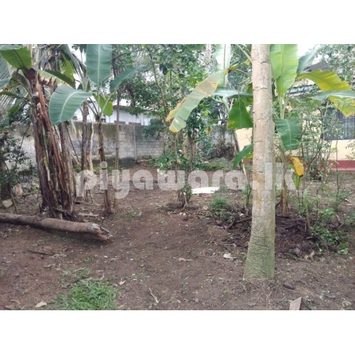 Land for sale at Malabe Thalahena