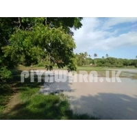 Land for sale at Thangalle