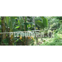 Land for sale malabe