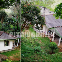 House for available in kandy (hanthana)